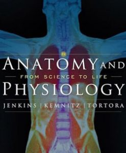 Download Genuine Test Bank for Anatomy and Physiology From Science to Life, 2nd Edition, Jenkins, 0470227583, 9780470227589